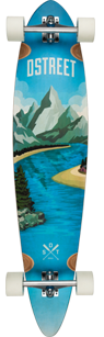 D Street Journey Freedom pintail longboard graphic